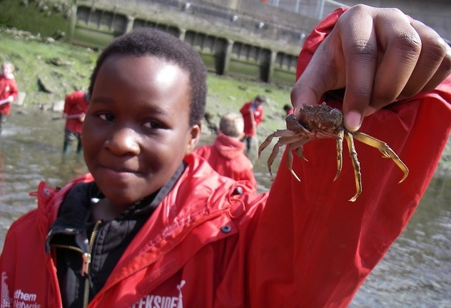 Family day out in London, Creekside Discovery Centre