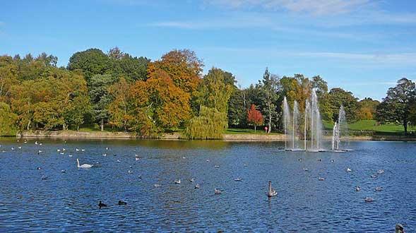 Roundhay Park