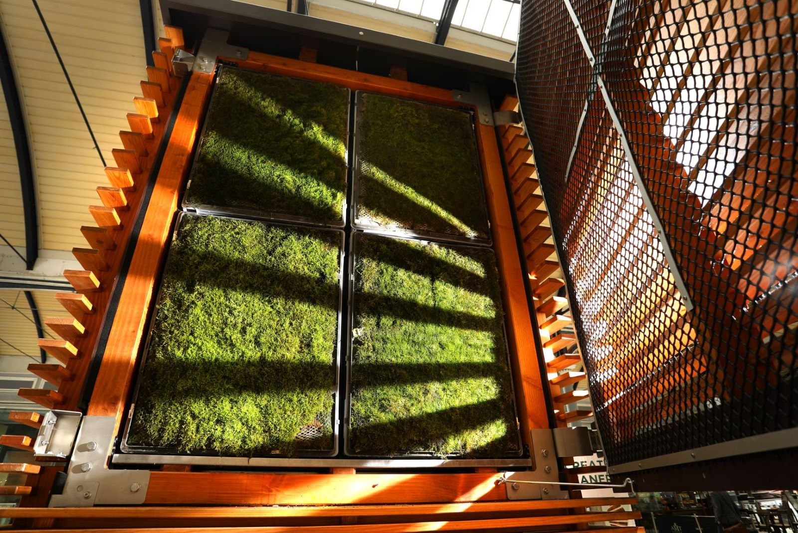 World First As Green CityTree Brings A Breath Of Fresh Air To Newcastle Central Station